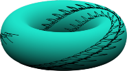Oscillator synchronisation via extremum seeking evolving on a torus